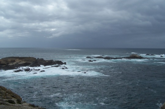 Point Lobos, Winter Day